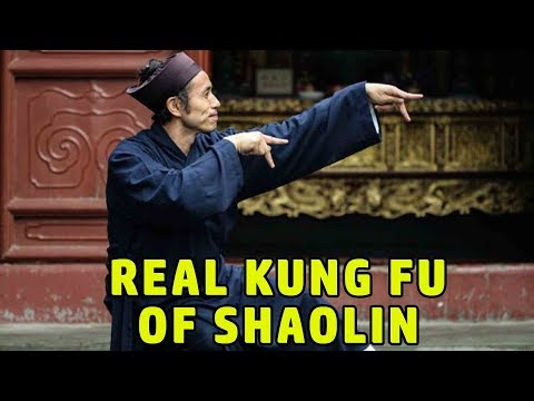 Wu Tang Collection - Real Kung Fu of Shaolin
