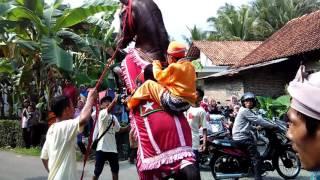 Download Video Atraksi Kuda Khas Pawai Taaruf dalam rangka Khataman Al-Qur-an di Kabupaten Kebumen MP3 3GP MP4