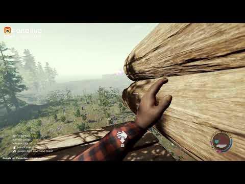 The Forest - Game sinh tồn cực như đời tới! ^^ - Thời lượng: 1 giờ, 53 phút.