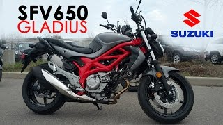 7. Suzuki Demo Ride - 2015 SFV650 Gladius