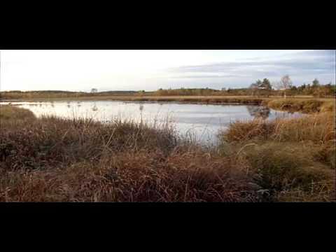 Naturreservat Film02