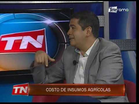 Ing. Robert Córdova