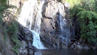 Marysville Australia  city photos : Steavenson Falls & Summit - A Brief Visual Tour (Marysville, Victoria, Australia)