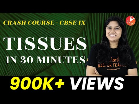 Score 100% in Biology | Tissues Crash Course in 30 Minutes | Vedantu Class 9