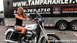 8. Used 2006 Harley-Davidson XL1200L Sportster 1200 Low for sale