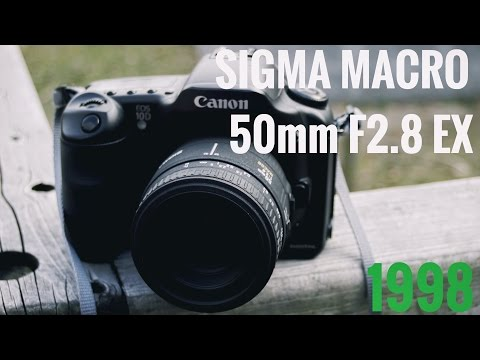 【レンズレビュー】SIGMA MACRO 50mm F2.8 EX【フルサイズ対応(一部)】