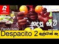 SIPPI CINEMA - Despacito Parody [හදපු හැටි]