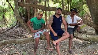 DENUNCIE QUEIMADAS CRIMINOSAS: A NATUREZA PEDE POR SOCORRO - LIGUE: 0800 61 0800