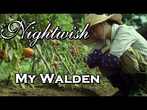 Tekst piosenki Nightwish - My Walden po polsku