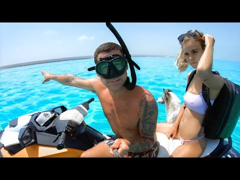 YBS Lifestyle Ep 44 - PERFECT SUMMER DAY | Dolphin Threesome | Catch And Cook - Thời lượng: 10 phút.