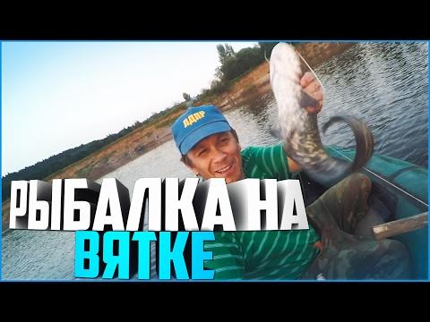 как будет клевать рыба река вятка