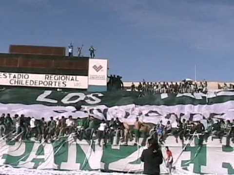 SALE WANDER - Los Panzers - Santiago Wanderers