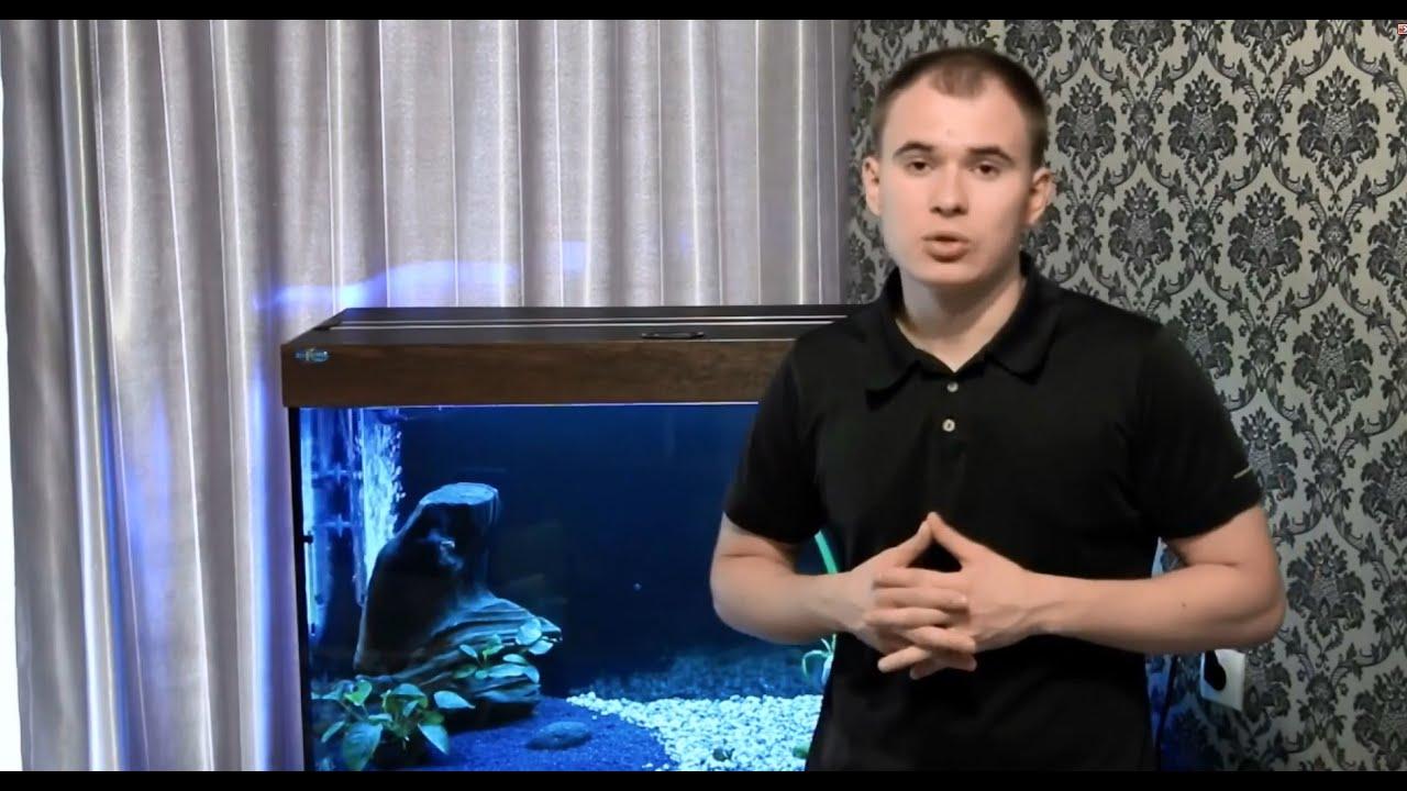 Смотреть онлайн: Интерактивный аквариумный туризм Сезон 2 Выпуск 14(Аквариум с пираньями)