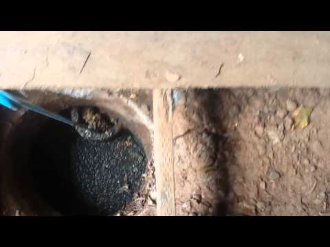 how to unclog septic tank inlet