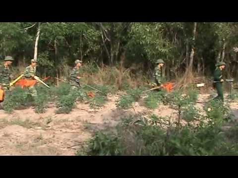 Nhà Tâm linh VŨ THỊ HÒA tìm mộ liệt sĩ tại Tây Ninh PHẦN 1
