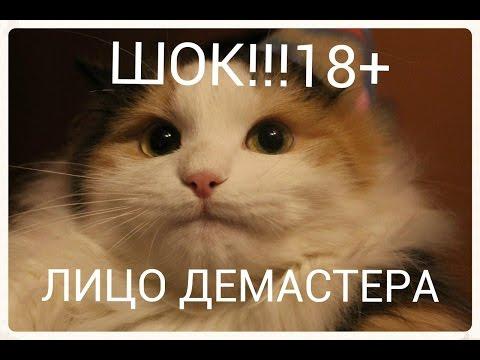ЛИЦО ДЕМАСТЕРА ( Demaster59ru )