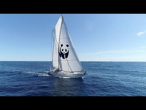 Αποστολή στη Ζάκυνθο με το WWF: «Όχι στις εξορύξεις πετρελαίου στο Ιόνιο »…