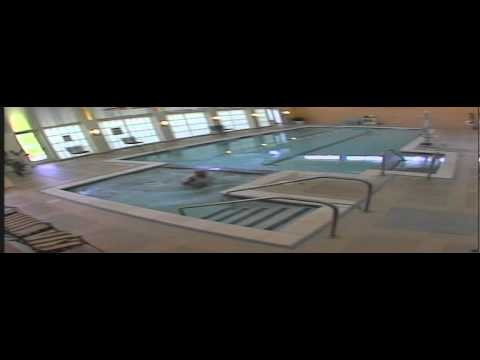 Technician talking on cell phone falls into pool