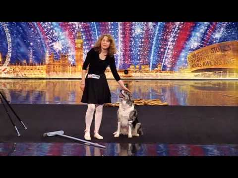 Jus - The amazing dancing ballet dog viewed on ITV1 on 17th April. Recorded from DVBViewer Copyright ITV.