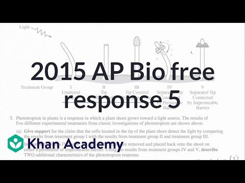 ap biology essay answers   kidakitap com
