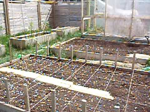 square foot gardening in a northern climate