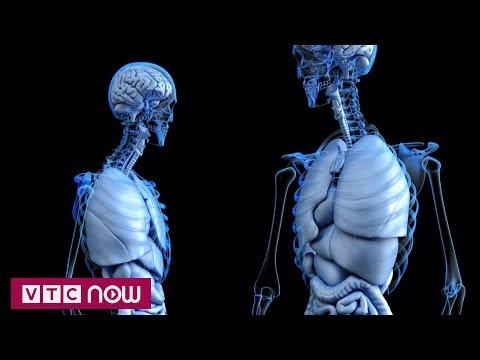 Các nhà khoa học Mỹ phát hiện cơ quan nội tạng mới | VTC1 - Thời lượng: 72 giây.