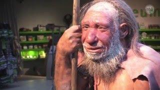 Mettmann Germany  city images : Schulpraktische Studien // Neanderthal Museum, Mettmann
