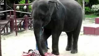see this real video ..its the best body massage ever anyone saw in his life ....