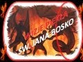 Wizje św Jana Bosko