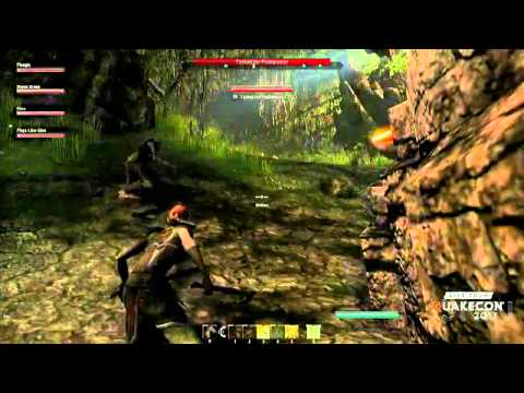The Elder Scrolls Online Gameplay – QuakeCon 2013