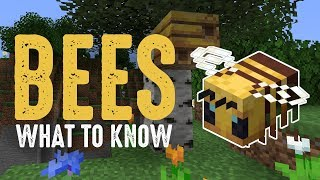 What You Should Know About Bees in Minecraft 1.15 •