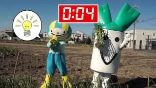 飛騨・美濃伝統野菜 徳田ねぎを収穫せよ!!編