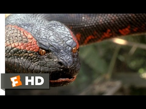Anaconda (8/8) Movie CLIP - Swallowed Whole (1997) HD (видео)