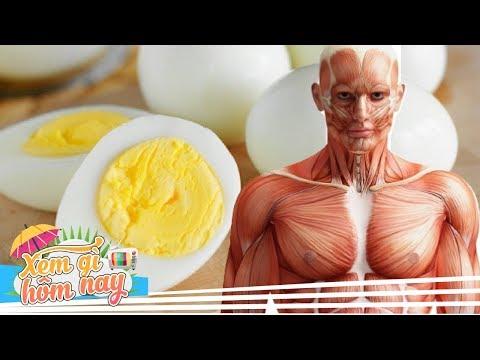 Chuyện Gì Xảy Ra Nếu Chúng Ta Ăn 3 Quả Trứng Mỗi Ngày - Thời lượng: 8:26.