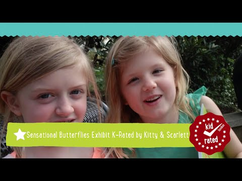 Kitty (8) &#038; Scarlett (6) – <span style=