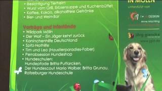 Tierheim Mölln - Einladung Zum Sommerfest Am 12. August 2012  11 - 16 Uhr