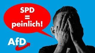 Video Voll blamiert! AfD-Politikerin führt SPD-Schreihals auf offener Straße vor! MP3, 3GP, MP4, WEBM, AVI, FLV Mei 2018
