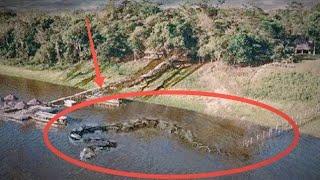 Video Mitos Legenda Ular Sepanjang 4km di Waduk Jatigede Yang Fenomenal MP3, 3GP, MP4, WEBM, AVI, FLV Mei 2019