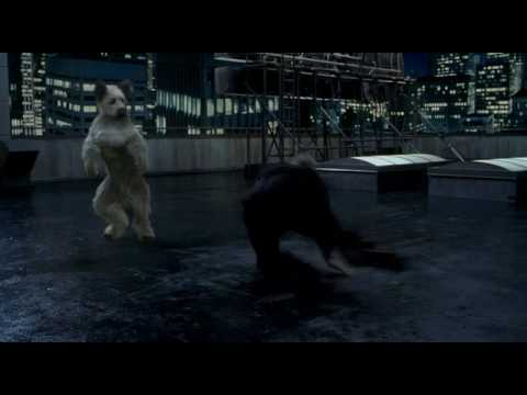 Karate Dog klip 5 - Karate Dog vs Jon Voight