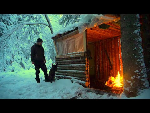 WINTER CAMPING THROUGH A BLIZZARD AT THE FORT IN THE WOODS WITH A DOG. Can we Stay Dry and Warm?