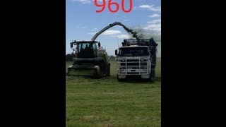 Colac Australia  city pictures gallery : Claas 960 with NH T7 Contracting Silage Australia/Colac