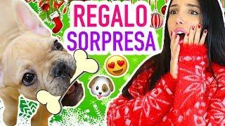 LA MEJOR SORPRESA!!! 🎁 NUEVO INTEGRANTE DE LA FAMILIA 🐶 *NO LO VAS A CREER* | Mariale