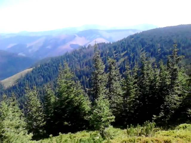 Hrebeňovka-nízke-tatry-2015-donovaly