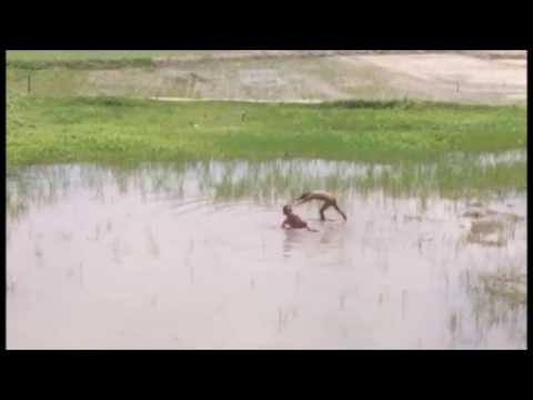 जमिनमा जमेको फोहोर पानीमा पौडेर रमाउदै बच्चाहरु