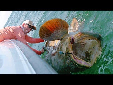 一班男子在大海釣到超巨大魚,下一秒。。。全場的人尖叫!