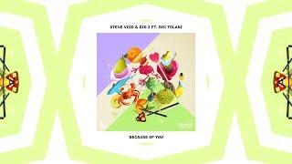 Steve Void & Big Z - Because Of You (ft. Bri Tolani) (Lyrics / Lyric Video | Strange Fruits Release)