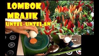 Video #TIS#Mau Cabe Sehat Buah Lebat? Ini Nutrisinya! |Pupuk,organik |DIY Chili Plants Nutrition from Eggs MP3, 3GP, MP4, WEBM, AVI, FLV Juli 2018