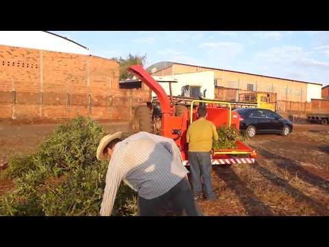 Picador / triturador de troncos e galhos Lippel - PDU 250 D - Urbana