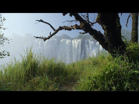 A Beautiful Travel Video Through Zambia