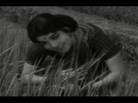 Adarsha Kutumbam Full Movie - Part 14/15 - Akkineni Nageswara Rao, Jayalalitha